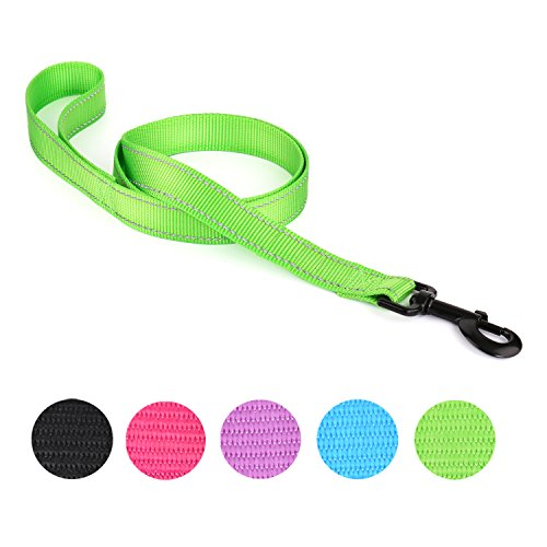 Newpets Heavy Duty Reflective Durable Nylon Dog Leash of Pet Walking Leash for Small , Medium and Large Dogs in 5 Colors Option (Green) (Reflective Leash Pet)