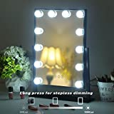 FENCHILIN Lighted Makeup Mirror Hollywood Mirror