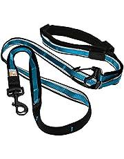 Kurgo 6-in-1 Hands Free Quantum™ Dog Leash, Running Dog Leash, Adjustable Dog Waist Running Belt, Reflective Dog Leash for Walking, Running, Hiking, 6 Foot Leash, Coastal Blue