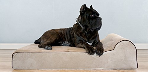Bully beds Orthopedic Memory Foam Dog Bed - Waterproof Bolster Beds Large Extra Large Dogs - Durable Pet Bed Big Dogs (Extra Large, Tan)