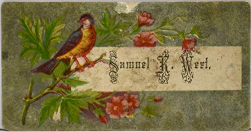 1890's Gentleman's Calling Card - Full Color Printed Name - Flowers and a Bird - 2 x 3.5 Inches - Collectible - Rare (Flower Calling Card)