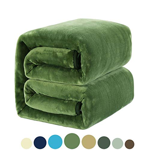 MEROUS Soft Queen Size Fleece Bed Summer Blanket 330 GSM Warm Cozy Microfiber Fuzzy Lightweight All Season Blankets for Couch Travel Sofa,Green