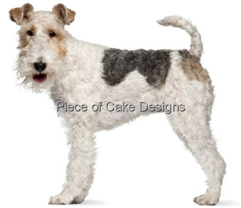 1/4 Sheet ~ Wire Fox Terrier ~ Dog Breed ~ Edible Cake/Cupcake Topper!!! ()