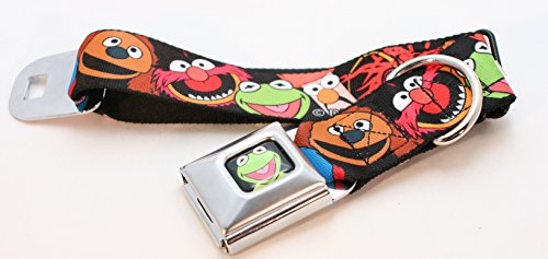 """Buckle Down """"Disney Muppets"""" Dog Collars (Wide Ribbon Wid..."""
