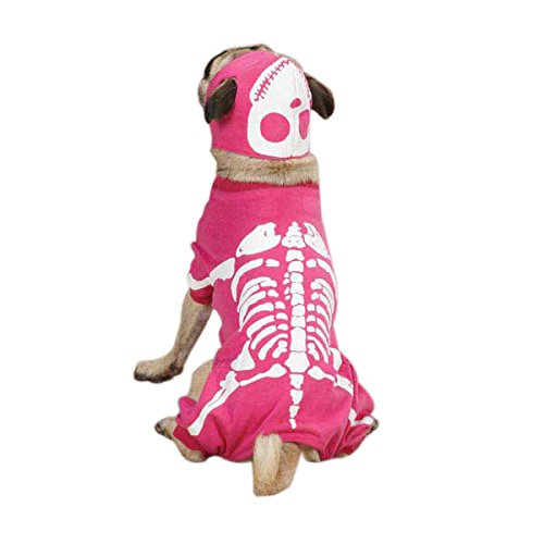 Seventies Fancy Dress (Casual Canine Glow Bones Costume for Dogs, 16