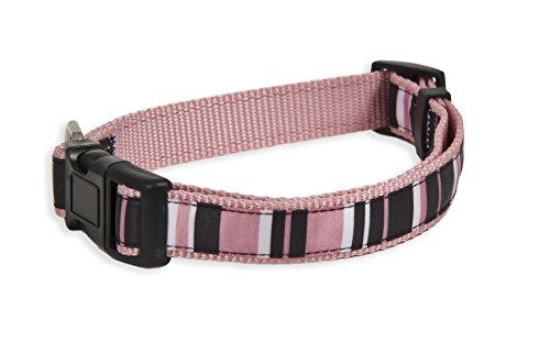 Aspen Pet Posh Stripes Collar, Black/White/Pink, 5/8