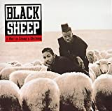 A Wolf In Sheep's Clothing - Black Sheep