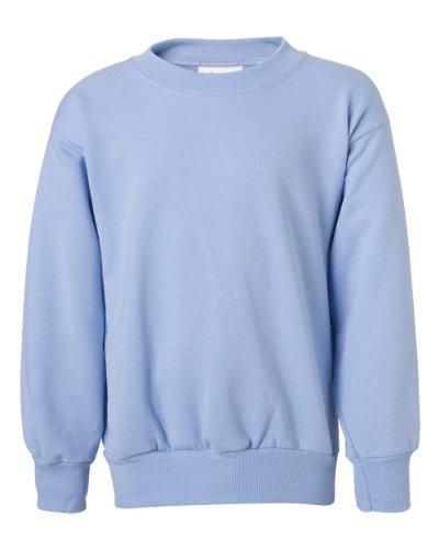 (Hanes Youth ComfortBlend EcoSmart Crewneck Sweatshirt_Light Blue_M)