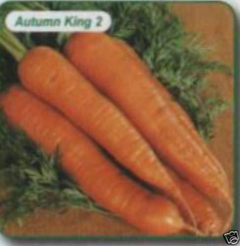 Carrot pelleted Late Autumn King 2 ap 210 Seed freepost