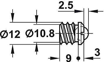 T/ürschnapper Messing blank M/öbelbeschl/äge Gedotec Rollenschn/äpper mit Gegenst/ück Kugelschnapper T/ür-Verschluss zum einbohren//eindrehen Schn/äpper /Ø 9 mm 2 St/ück