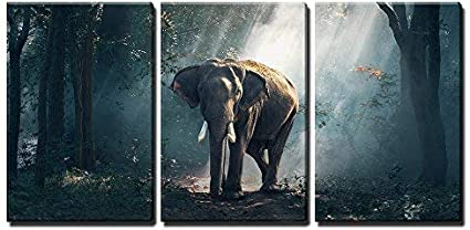 Wall26 3 Piece Canvas Wall Art Elephants In The Forest Modern Home Art Stretched And Framed Ready To Hang 24 X36 X3 Panels Posters Prints