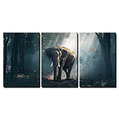 Elephants in The Forest x3 Panels - Canvas Art