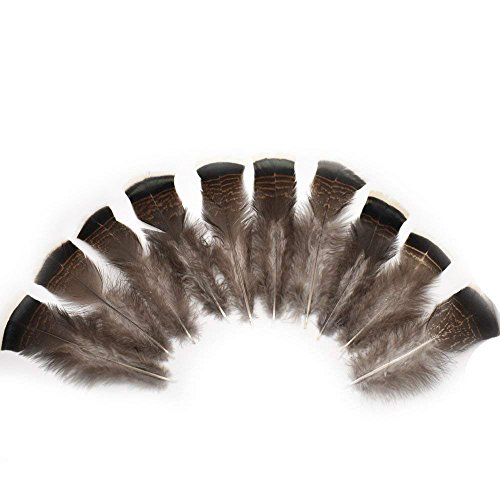 (CHQHQ Turkey Feathers Natural 5.9-7.87inch Tail Feather Plume DIY Jewelry Crafts Quill Pen Wedding Party Cloth Dress-up Home Decoration (15pcs Nature Color))