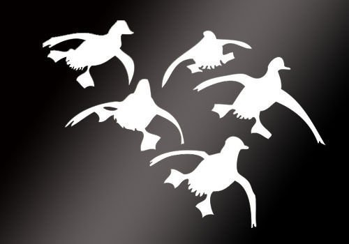 g Ducks Landing Hunting Auto Car Sticker Waterfowl Graphic Vinyl Decals ()