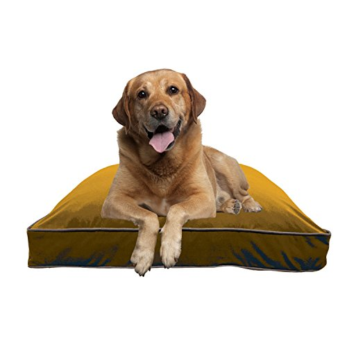Yogibo DoggyBo - Comfortable Doggy Bed - Soft Bed to Keep your Pup off the Floor - Shape Conforming Bed - Soft Cotton Cover - Perfect for Great Night Sleep - Keeps Cool ()