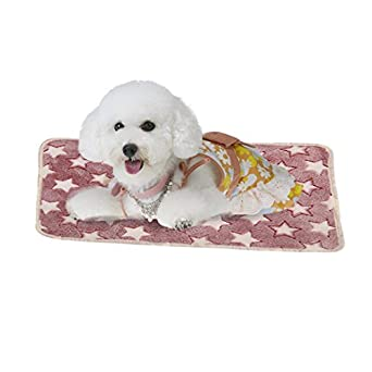 vmree Dog Blanket, Small Pet Cat Dog Puppy Mat Paw Bone Print Cushion Fleece Soft Blanket Bed good