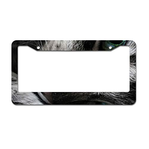 (DKISEE Abstract Beautiful Cat Eye Pic License Plate Frame Aluminum Car Licence Plate Covers with 2 Holes 12