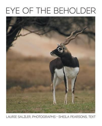 Eye of the Beholder pdf