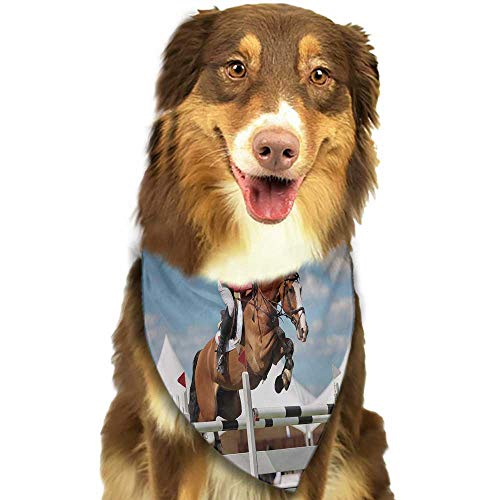 Creative Family pet Scarf Horse Jumping Horse and Sportsman Race Competition Performance Success Winning Event Print W27.5 xL12 Scarf for Small and Medium Dogs and Cats ()