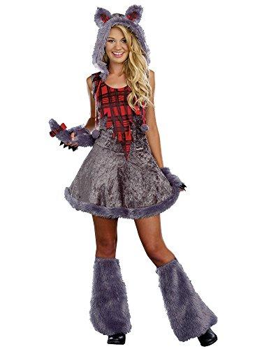 Sugar Sugar Juniors Full Moon Sass, Grey, (Teen Costumes)