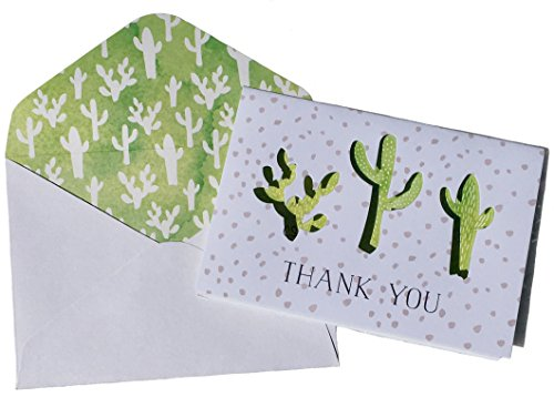 Molly & Rex Window Boxed Cactus Trio Laser Cut Thank You Note Cards 13798, Set of 10