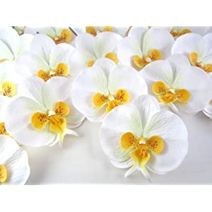 """(100) White Yellow Phalaenopsis Orchid Silk Flower Heads - 3.75"""" - Artificial Flowers Heads Fabric Floral Supplies Wholesale Lot for Wedding Flowers Accessories Make Bridal Hair Clips Headbands Dress 49"""