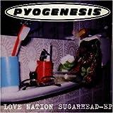 Love Nation Sugarhead by Pyogenesis