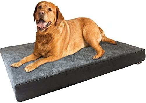 Dogbed4less Memory Foam Dog Bed Orthopedic Ultra Plush Mattress, Thick Waterproof Lining and Machine Washable Cover, Multiple Sizes Colors
