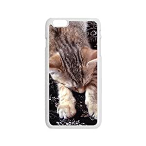 Brown Cat Hight Quality Plastic Case for Iphone 6