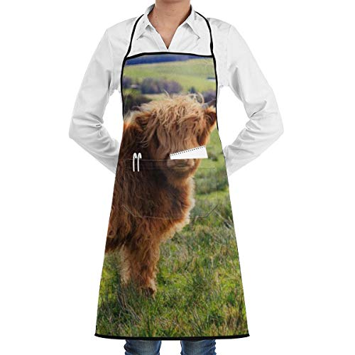 Funny Highland Cow Apron Lace Unisex Mens Womens Chef Adjustable Polyester Long Full Black Cooking Kitchen Aprons Bib with Pockets for Restaurant Baking Crafting Gardening BBQ Grill -