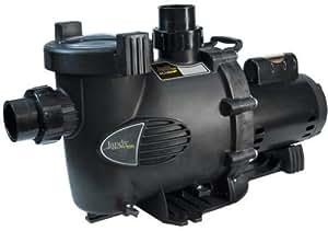 Zodiac Jandy Phpm2.5 Plushp 2.5-hp Up-rated High Head Pump, 230 Vac