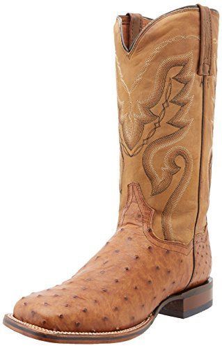(Dan Post Men's Chandler Western Boot,Bay Apache,10 D US)