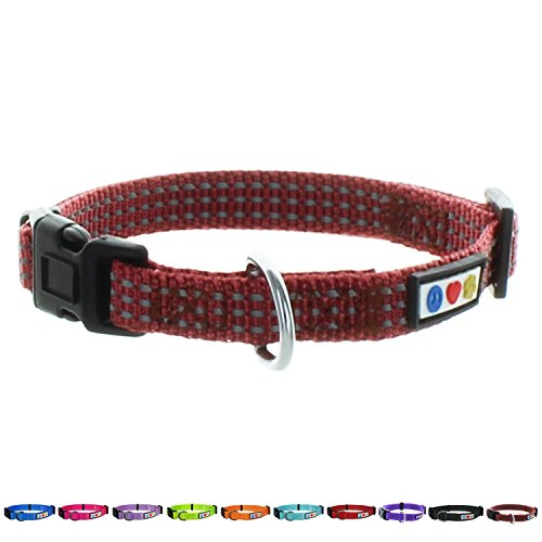 Pawtitas Dog Collar for Medium Dogs Reflective Training Puppy Collar with Stich - M - Brown Marsala