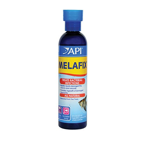 Natural Antibacterial Remedy - API Melafix Antibacterial Fish Remedy- 16 fl. oz. (2 pack)