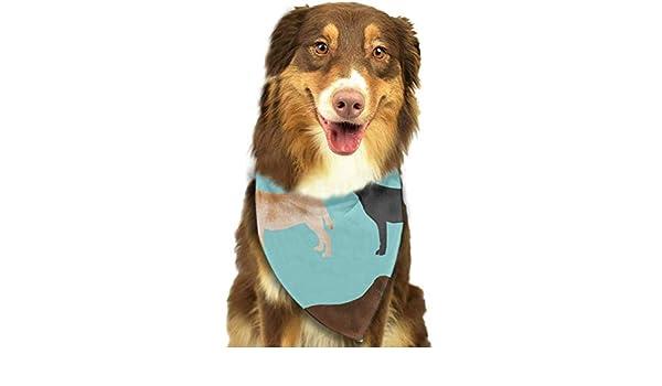 Osmykqe Perro Bandana Lindo Labradors Laboratorio Negro Mascotas Perros Baberos Trangle Head Bufanda para Gatos Pupply Big Dog Suave: Amazon.es: Productos ...