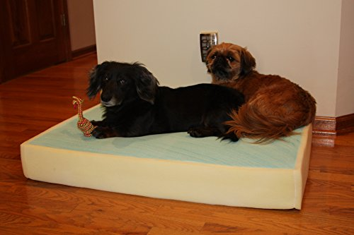 Memory Foam Dog Pet Bed Mattress Core with Gel, Large Size L35xW38xH6 inches Made in USA