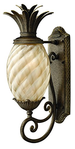 Hinkley 2120PZ Leaf, Flower, Fruit One Light Wall Mount from Plantation collection in -