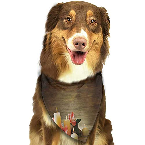 (Dog Bandana Spa Spa Composition with Many Candles Wellbeing Unity Neutrality Icons Calm Happiness Theme W27.5 xL12 Scarf for Small and Medium Dogs and Cats)