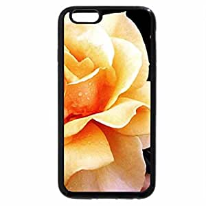 iPhone 6S / iPhone 6 Case (Black) beautifil rose FOR YOU ANNIE I DONT THINK THIS IS COPYWRITED