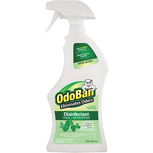 OdoBan Clean Control EULA Cleaner 2.3 lb, 32 Fl Oz
