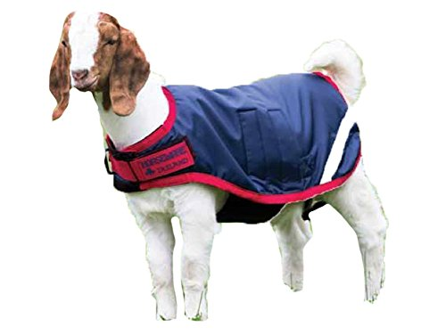 - Horseware Goat Coat - Size:XLarge Color:Navy/Red