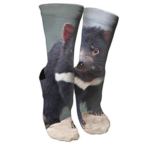 (CUUOP13 Tasmanian Devil Unisex Compression Socks Foot Long Socks Sport Soccer Mesh Tube Socks for Running,Nurses,Shin Splints,Travel,Flight,Pregnancy & Maternity)