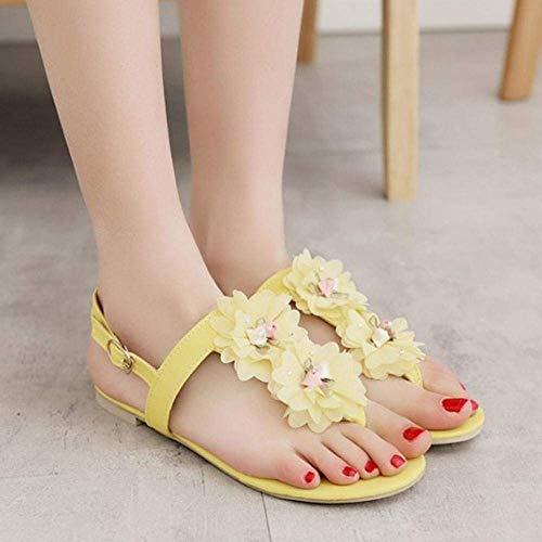 Sandales Femmes Qiusa Flats Clip Toe B0qFFxAZw