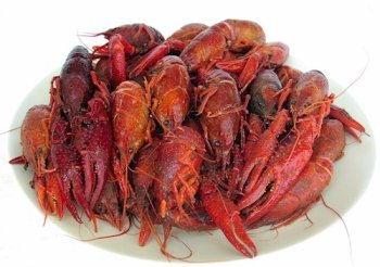 5 lbs. Crawfish