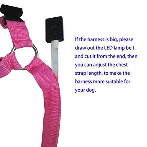 LED Licht Hundegeschirr Verstellbare Leuchtend Pastell Brustgeschirre Laufgeschirre Vest Sicherheits Geschirr USB Aufladbar Harness Gassigehen bei Nacht f/ür Kleine Mittlere Hunde Welpen
