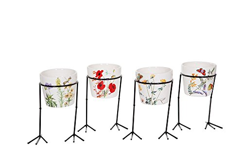 Special T CER Lg Bird Leg Wild Flower Set of 8, 4Asst