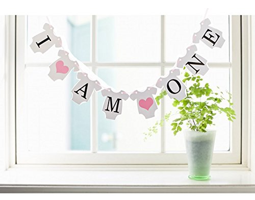 Since 1 Set I AM ONE Banner Baby 1ST Birthday Garland Sign Photo Props Kids Birthday Party Decoration (Pink) by Since