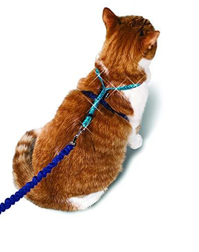 petsafe Come with Me Kitty - Arnés con Purpurina y Correa elástica para Gato, Azul, Mediano