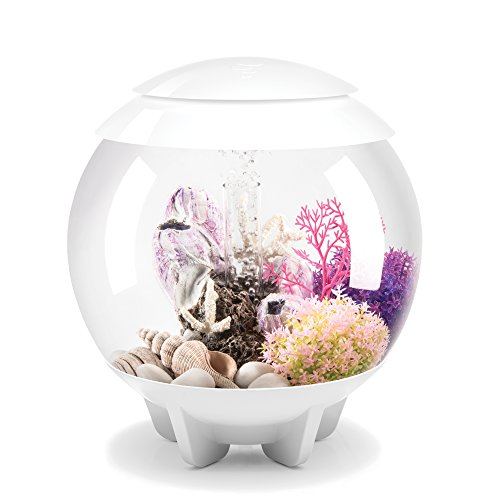 biOrb HALO 15 Aquarium with MCR LED Light – 4 Gallon, White (Designer Fish Tank)