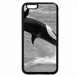 iPhone 6S Plus Case, iPhone 6 Plus Case (Black & White) - KILLER WHALE